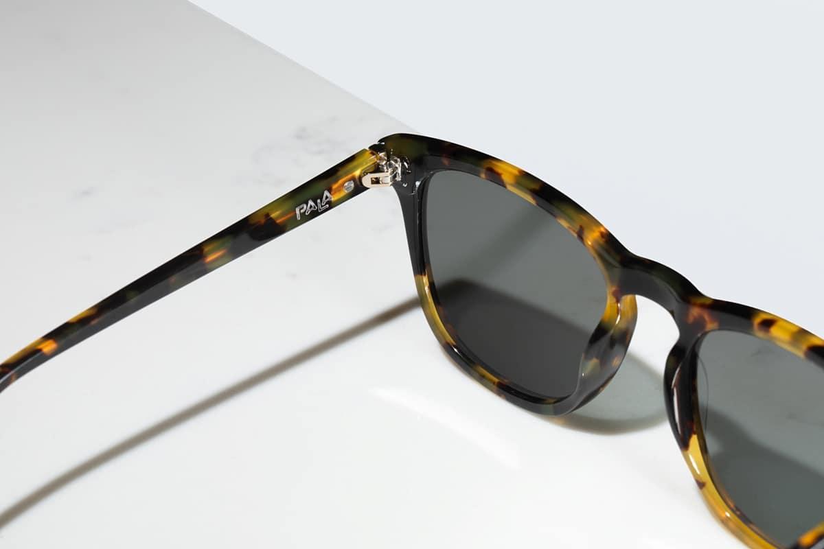 studio image tortoiseshell sunglasses with polarised lenses