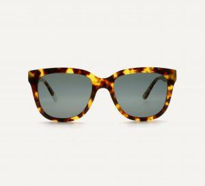 tortoisehell wayfarer sunglasses