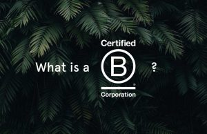 What is a b corp text over leaves
